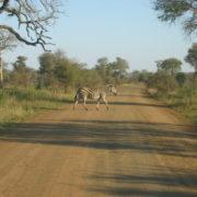 Park Narodowy Krugera
